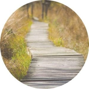 Walk and talk counselling for professionals